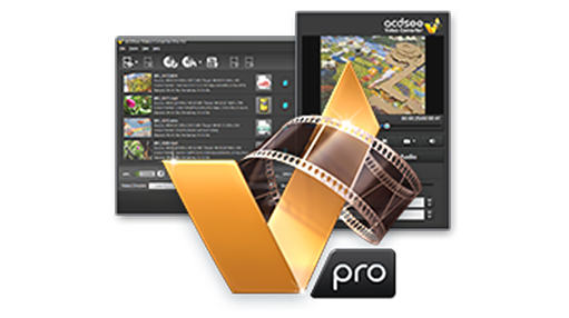 ACDSee Video Converter Pro 4